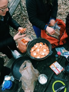 Susanna Jenkins features campfire sweet potatoes in her food diary for AMST 375: Food in America.